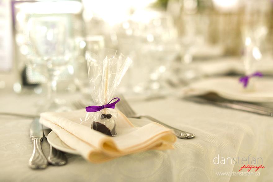 Karolina Patrick Wedding Toronto 42 Wedding : Karolina & Patrick : Royal Ambassador